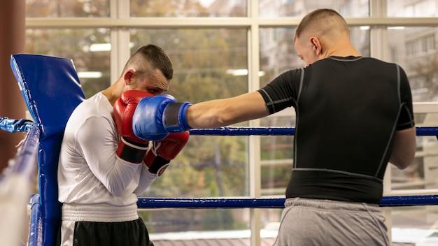 Boxer mit handschuhen, die mit mann trainieren