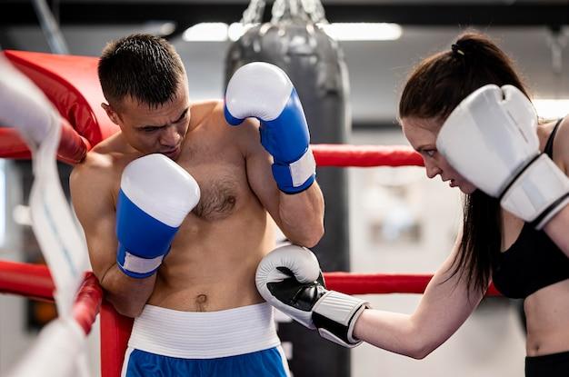 Boxer stehen sich gegenüber