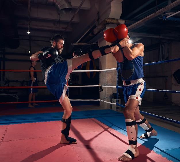 Boxer trainieren kickboxen im ring