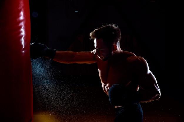 Boxer und boxsack