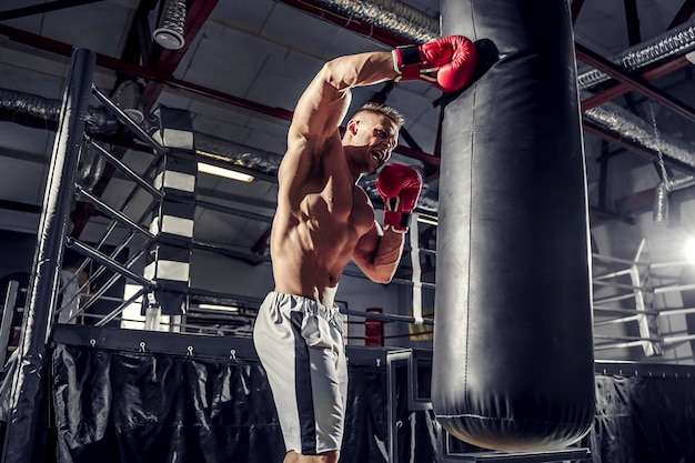 Boxertraining auf einem boxsack im fitnessstudio.