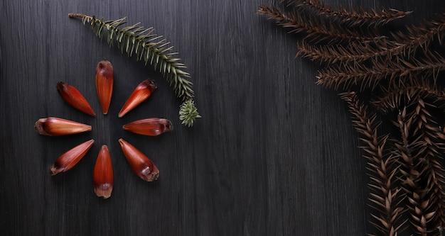 Brasilianische ritzel in brauner und roter holzschale auf grauem holzhintergrund.