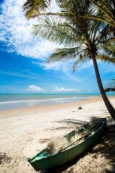 Brasilianische strandküste an einem sonnigen tag in barra do cahy,
