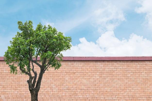 Braune backsteinmauer der nahaufnahme mit hintergrund des grünen baums und des blauen himmels