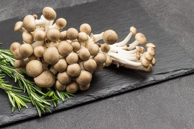 Braune buchenpilze, shimeji-pilze und rosmarinzweige. Premium Fotos