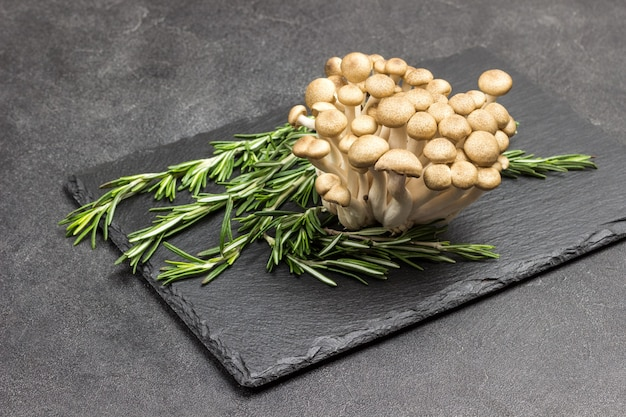 Braune shimeji-pilze und rosmarinzweige.