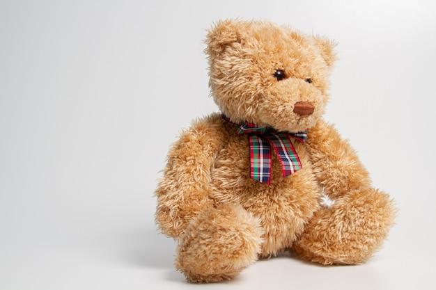 Brauner teddybär lokalisiert auf weiß. speicherplatz kopieren.
