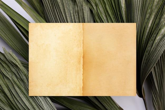 Braunes altes vintage-seitenpapier auf tropischen palmtrockenblättern. platz kopieren