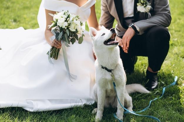 Braut mit bräutigam mit ihrem hund an ihrem hochzeitstag