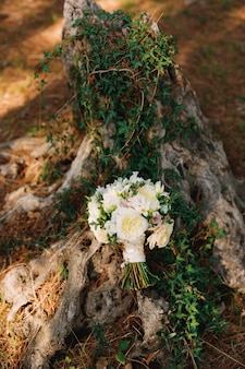 Brautstrauß aus weißen rosen freesien buchsbaumzweigen und weißen bändern in der nähe des efeustumpfes