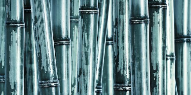Breiter harter bambushintergrund