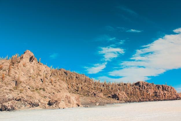 Breiter schuss einer klippe in der wüste mit einem klaren blauen himmel an einem sonnigen tag