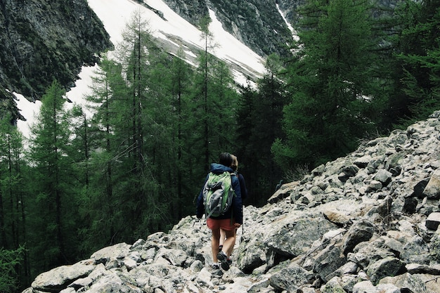 Breiter schuss von touristen, die einen felsigen hügel wandern, umgeben von grünen kiefern