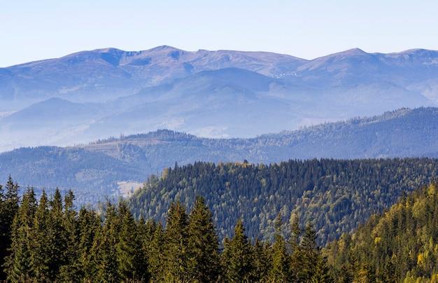 Breites panorama der grünen berghügel bei sonnigem klarem wetter. karpatenlandschaft im sommer. blick auf felsige gipfel mit grünen kiefern bedeckt. schönheit der natur.