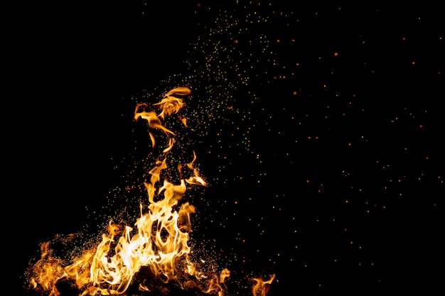 Brennender wald mit feuerfunken, flamme.