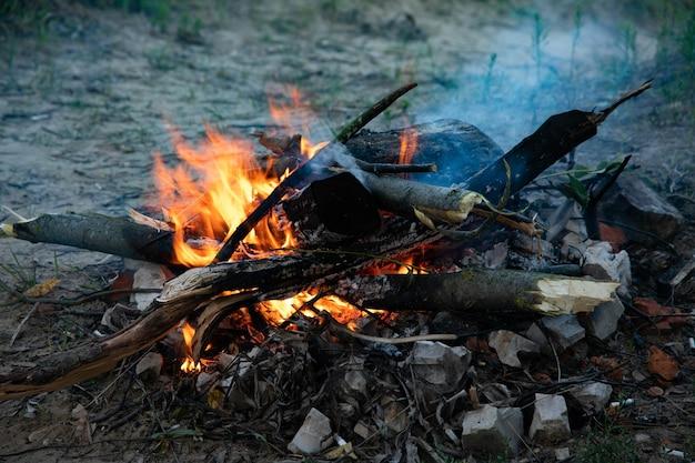 Brennendes feuer mit holz. koch- und heizkonzept.