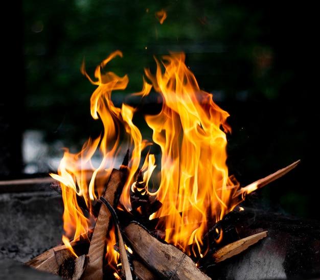 Brennendes lagerfeuerholz auf kohlenbecken auf natur