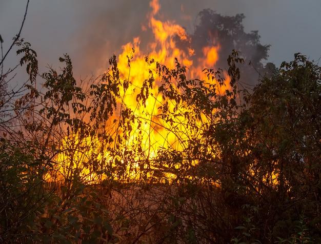 Brennendes landhaus am frühen morgen, nahaufnahme