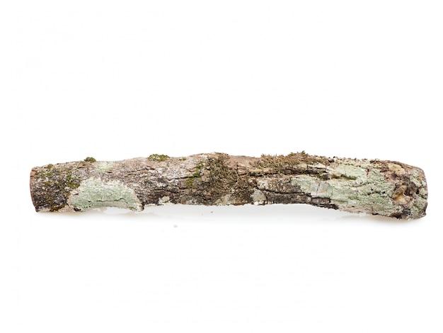 Brennholz auf einem weißen hintergrund