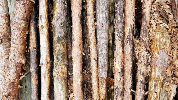Brennholz auf großem haufen, draufsicht, schöne holzstämme. hintergrund der gestapelten baumstämme draufsicht von der drohne. stapel gestapelter natürlicher gesägter holzstämme hintergrund.