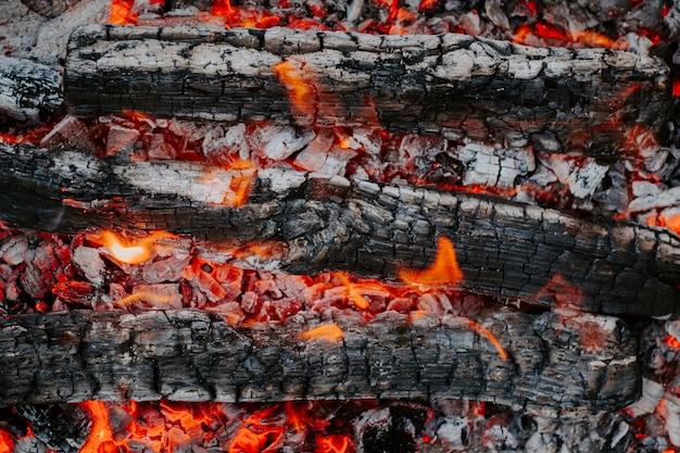 Brennholz. flache lage, draufsicht