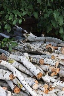 Brennholz im sägewerk birkenwald das holz ist ordentlich gestapelt