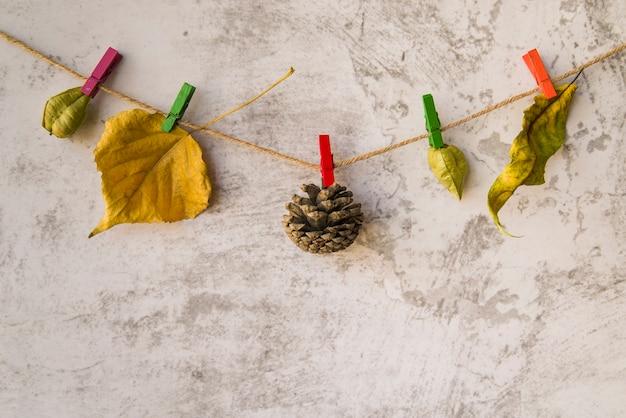 Broschüren und strobile hängen an der schnur