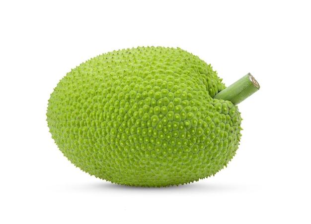 Brotfrucht isoliert