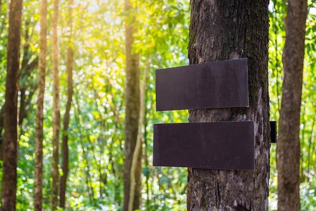 Brown-alter hölzerner weg unterzeichnen herein kiefernwald
