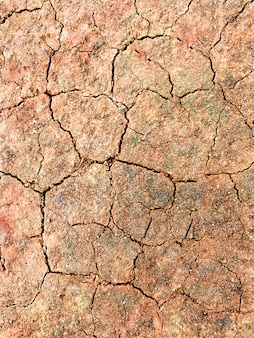 Brown cracked dirt texture