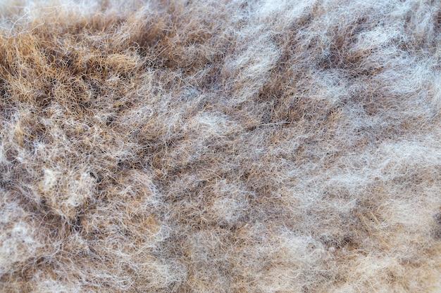 Brown-vliesbeschaffenheitshintergrund, schafe