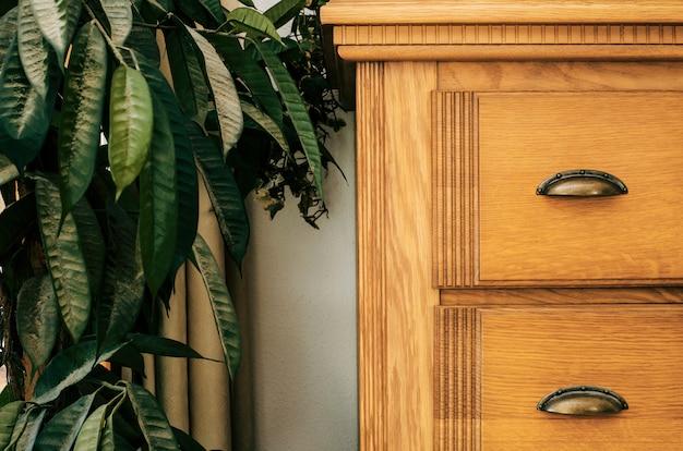 Brown-wandschrank mit grünem zimmerpflanzennahaufnahmehintergrundbeschaffenheitsausgangsinnenraum