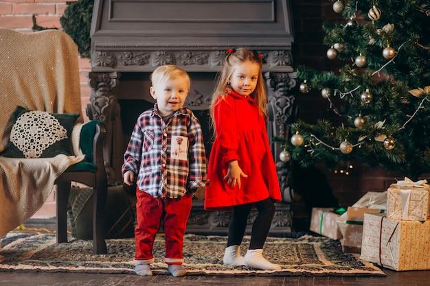Bruder mit schwester am weihnachtsbaum