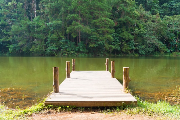 Brücke am wasser