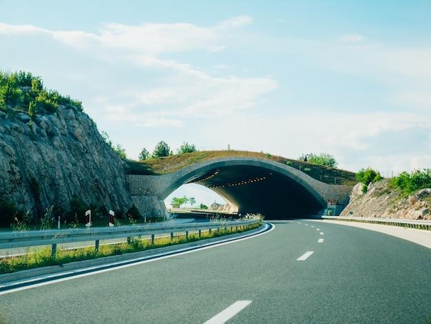 Brücke für tiere auf der straße grüne brücke über die straße