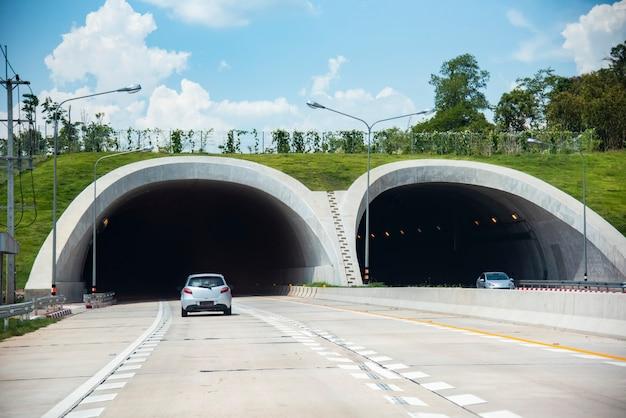 Brücke für tiere über einer landstraßenwaldstraßentunnel-verkehrsautogeschwindigkeit auf straße