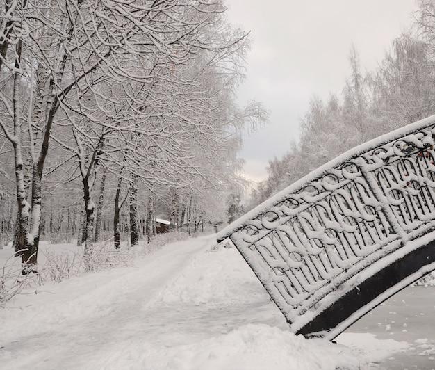 Brücke im winterpark