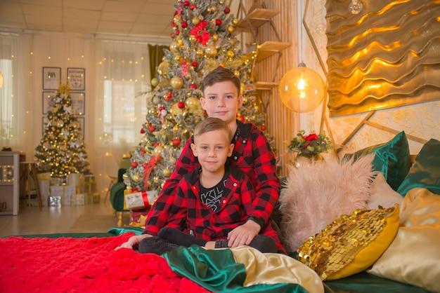 Brüder zusammen zu weihnachten in der nähe des baumes