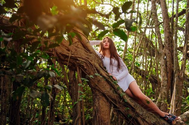 Brünette mit langen haaren posiert in einem baum mit lockigen hängenden zweigen. junges attraktives mädchen im kurzen weißen kleid auf banyan im warmen sommertag. reisen, abenteuer, fotoshootings in heißen ländern