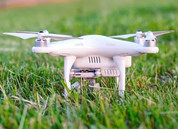 Brummen mit kamera im gras, das sich vorbereitet zu fliegen
