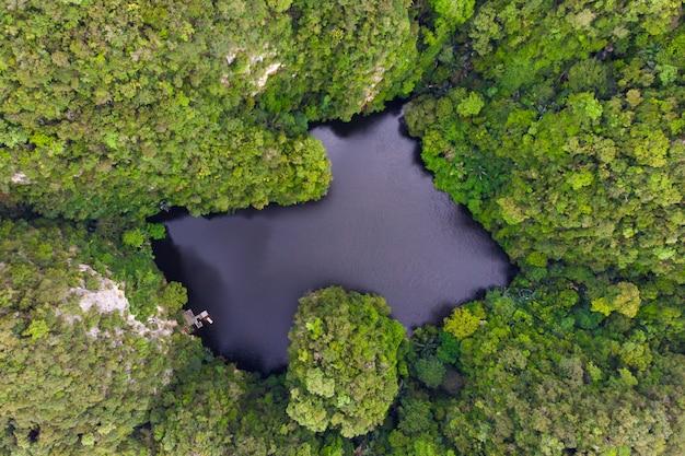 Brummenansicht von see, wo als spiegelsee in ipoh, malaysia genannt wird