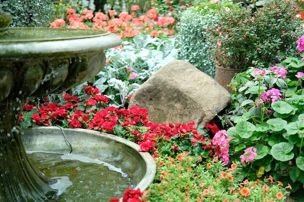 Brunnen & blumenblüte im gartenpark