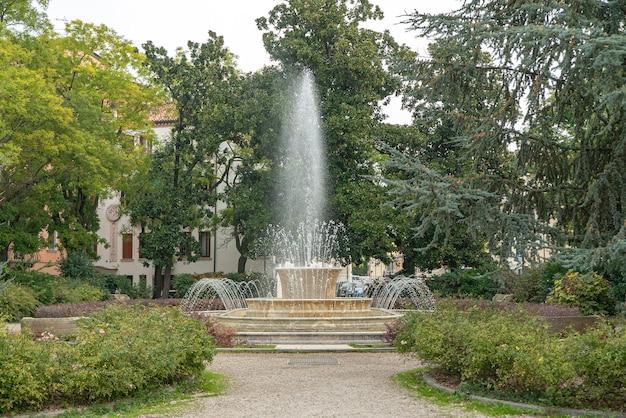 Brunnen-zeitraffer-landschaftsdetail in rovigo, italien