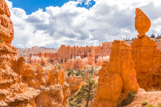 Bryce canyon national park tagsüber in utah, usa