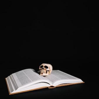 Buch der zauber und des schädels
