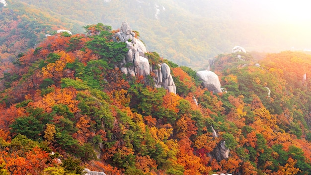 Buchhansan berge im herbst, seoul in südkorea