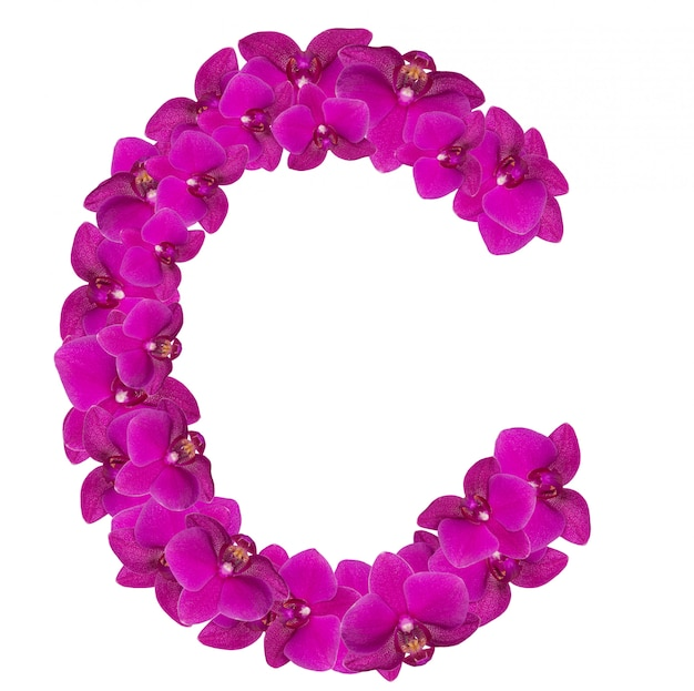 Buchstabe c aus rosa blütenblättern