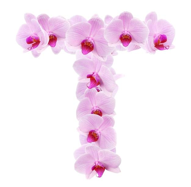 Buchstabe t aus orchideenblüten. isoliert auf weiß