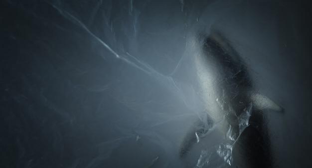 Buckelwal hinter dem transparenten und zerknitterten kunststoff, mit kopierraum. kreativer konzepthintergrund für umweltschutz und kunststoffbewusstsein.