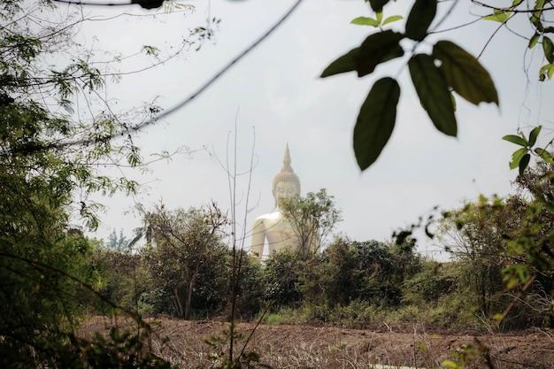 Buddha auf einem ländlichen gebiet.